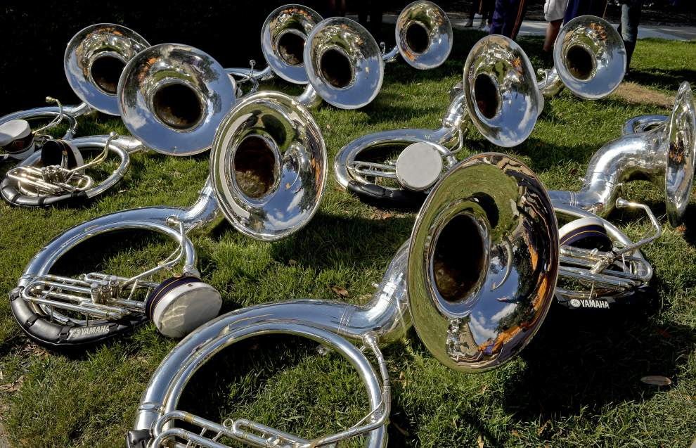 Like ten tubas sitting all lonely on the grass.