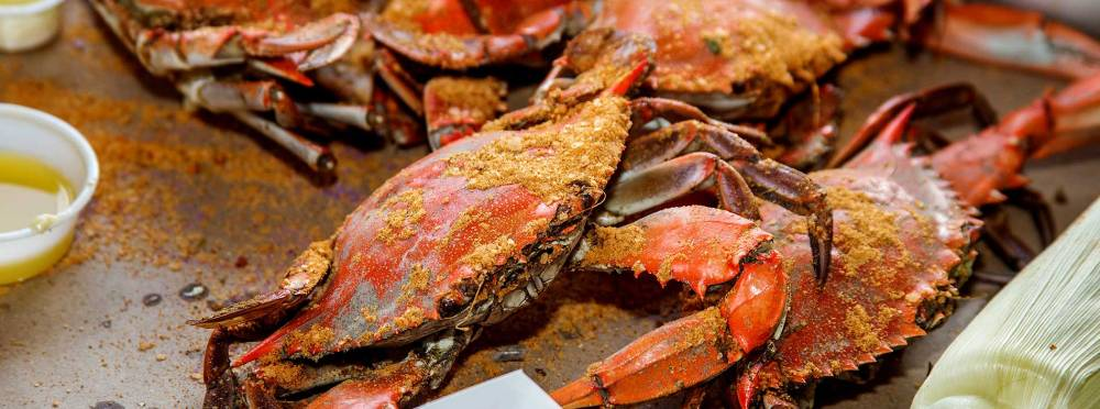 Maryland blue crabs. So much work for so little meat for so much reward.