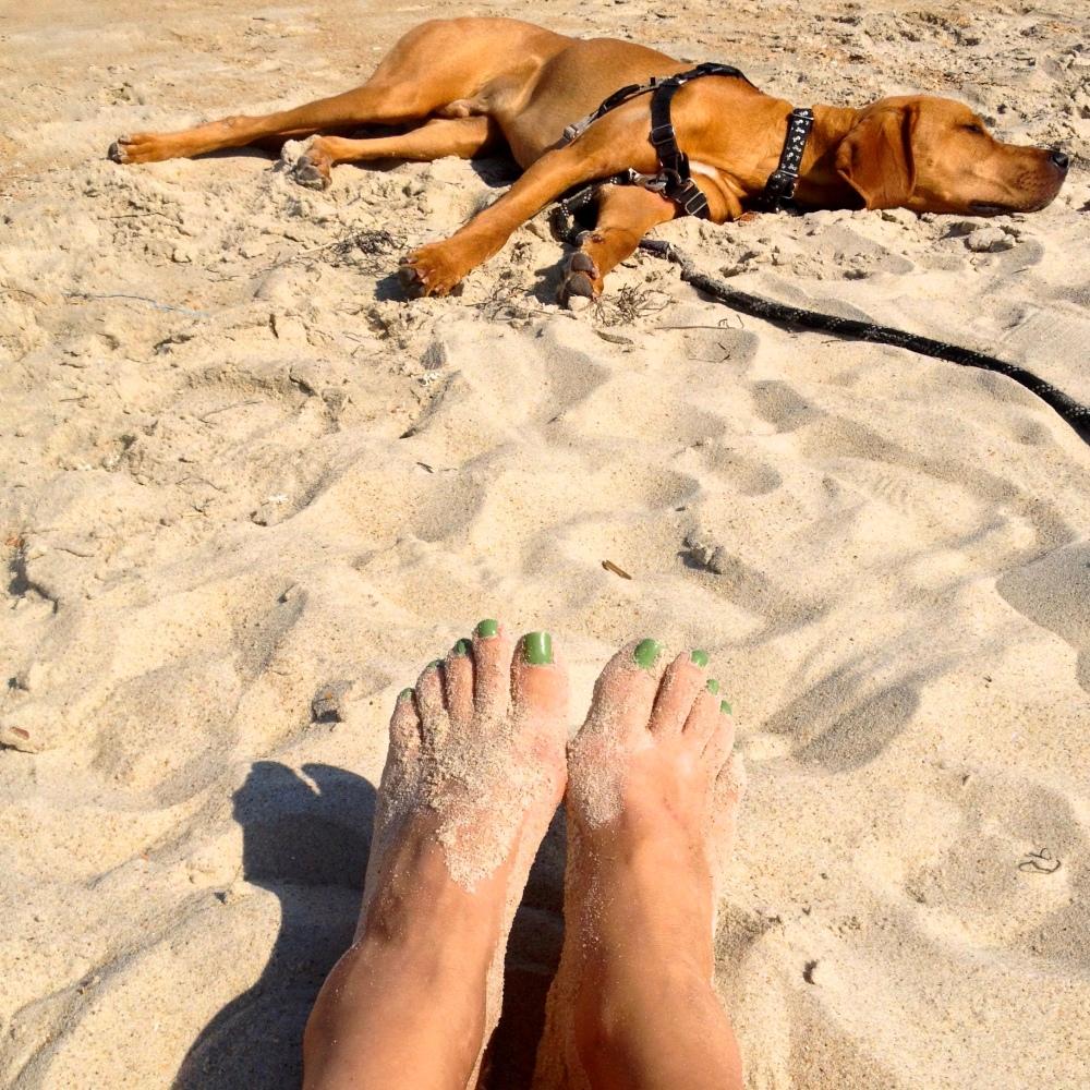 Feet and Beast at beach.