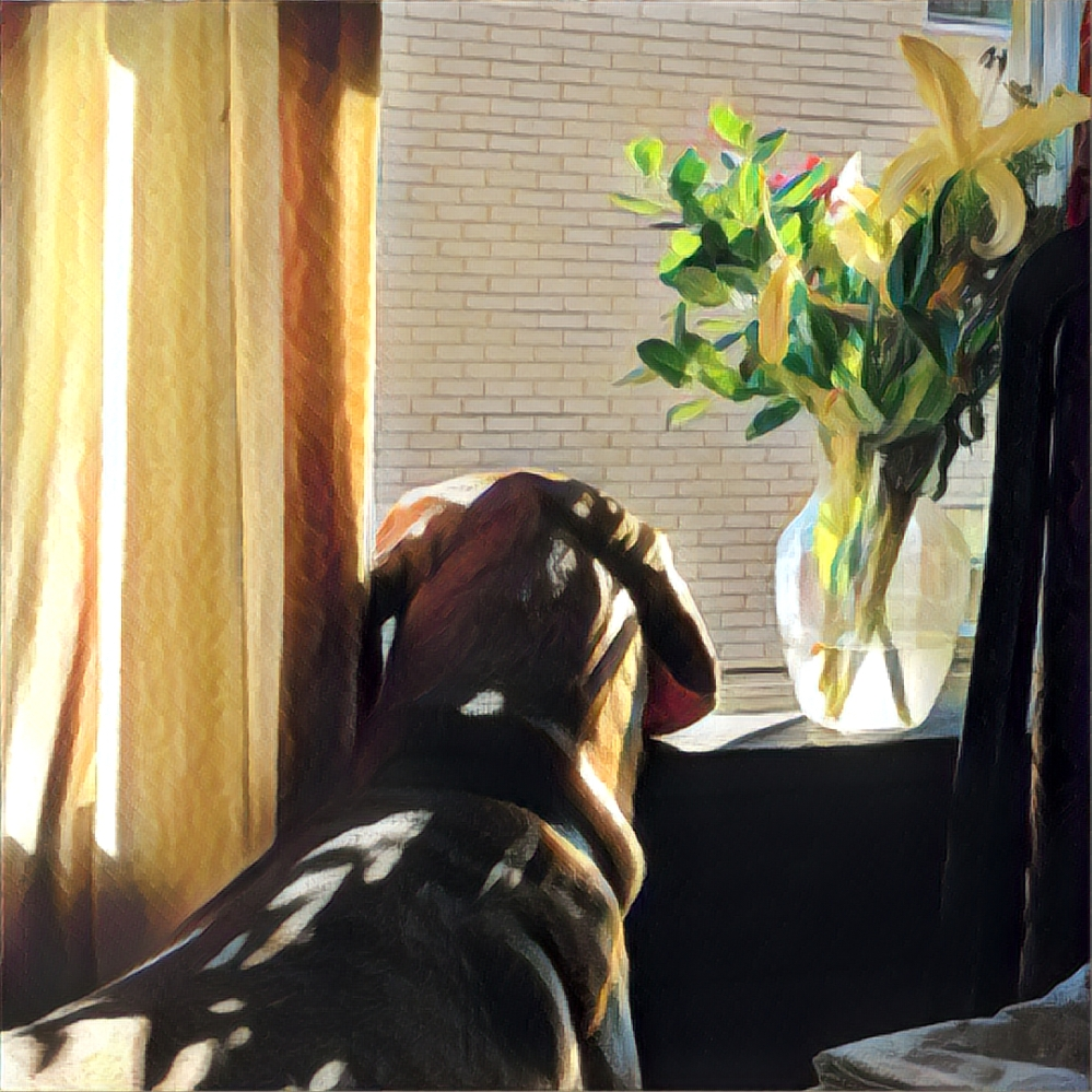 The Beast looks outside through the window with a bouquet and vase next to him.