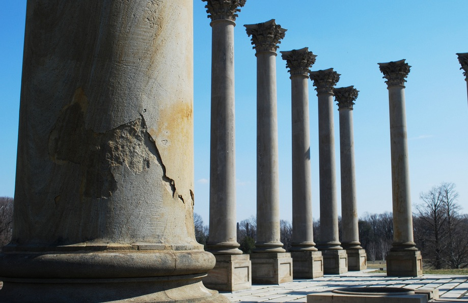 A pic of the columns in the National Arboretum. Someone else took this picture.