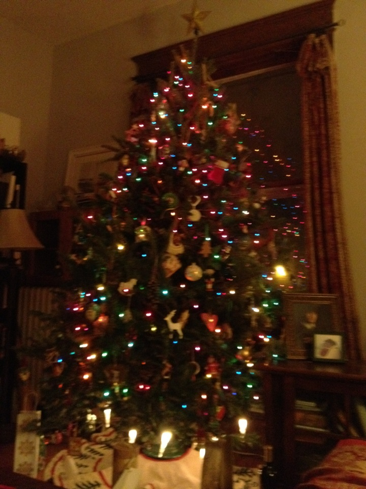 It's my tree. From before. Not this year. So?