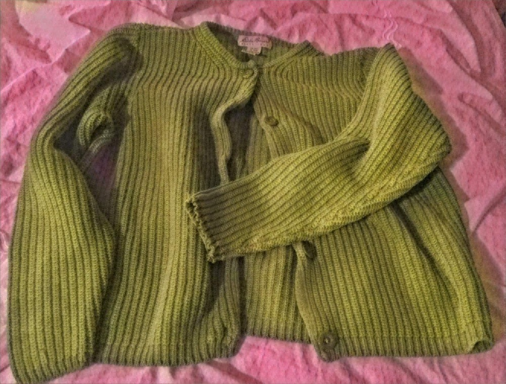 An old green cardigan. It's mine. Now. Not for long, though.